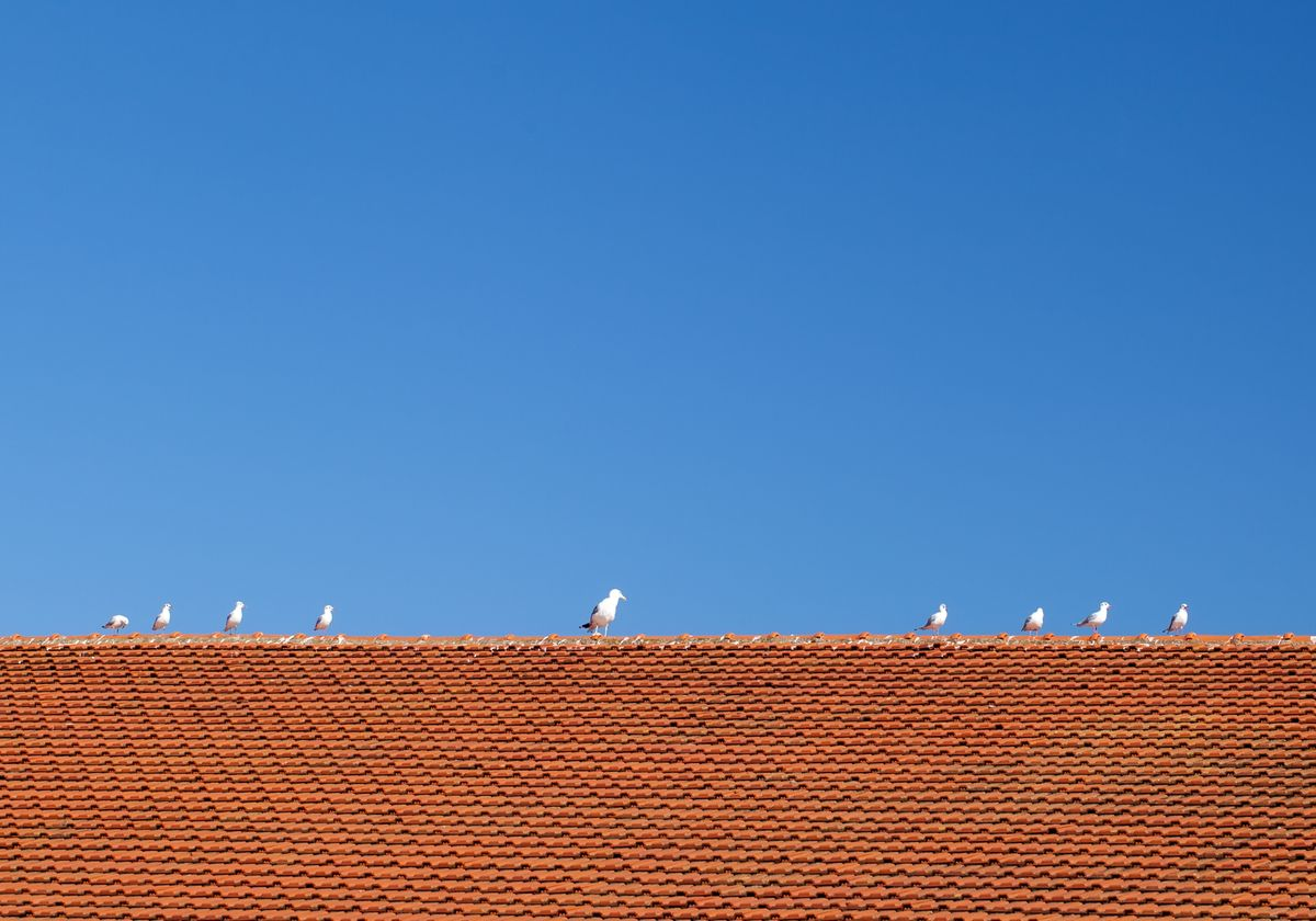 roof coating.jpg
