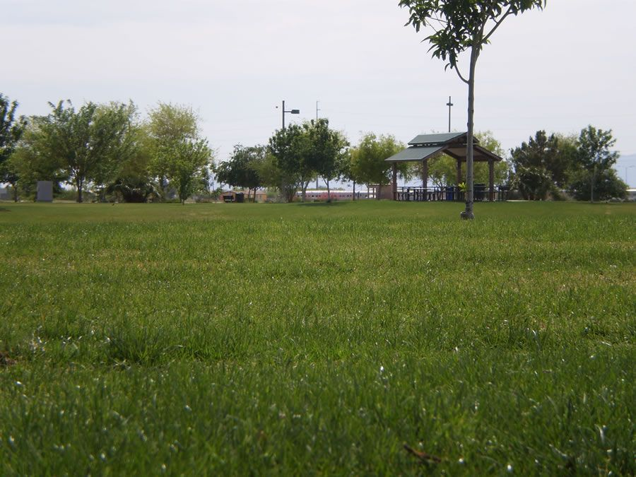 tumbleweed-park-6.jpg
