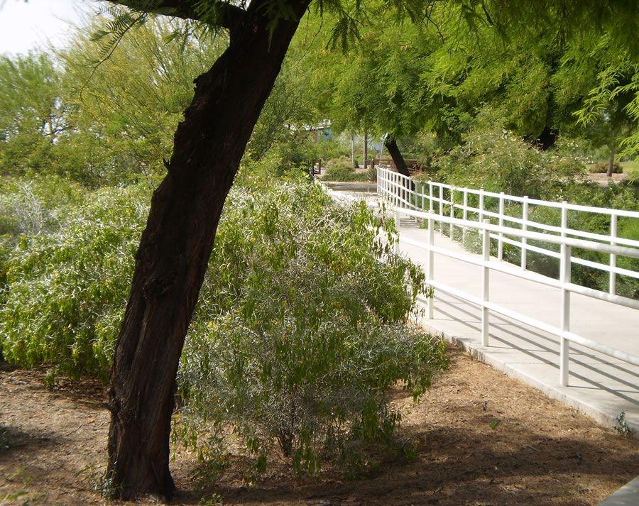 tumbleweed-park-2.jpg